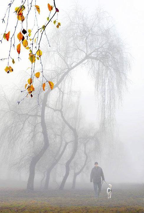 Mùa đông buồn ....