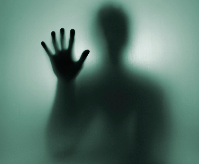shadow self, addomesticare la propria ombra
