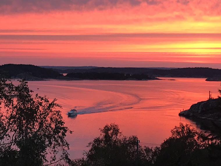 Paisaje de verano del municipio de  Lysekil, Suecia. Fotografía cortesía de Rosario Zúñiga D.