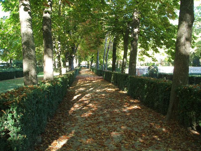 Aranjuez jard n de la isla paisaje libre for Jardines 7 islas