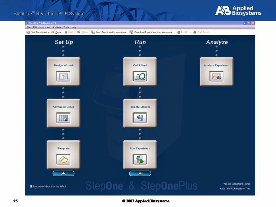 real time pcr pdf tutorials