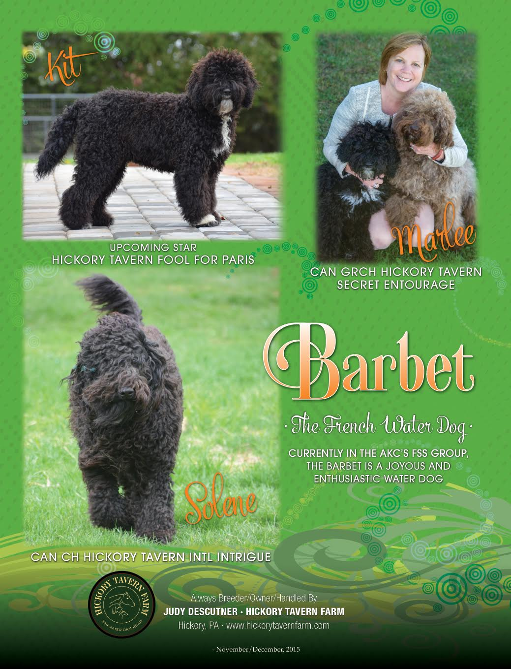 Hickory Tavern Farm Barbet: Canine Chronicle Ad Nov/Dec 2015 - photo#42
