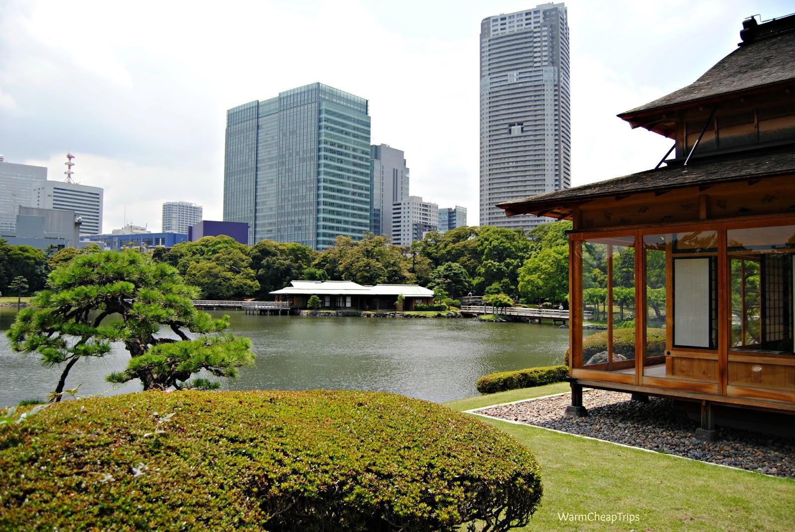 Il mio itinerario di 10 giorni a tokyo e nel tohoku for Giardino hamarikyu