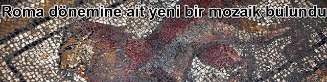 Osmaniye'de Roma dönemine ait yeni bir mozaik bulundu