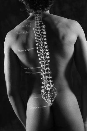 Pourquoi fait mal les reins à la maladie