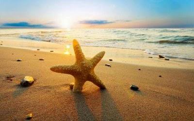 «Πλαστική απειλή στις ωραίες ακτές μας»