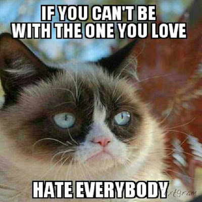 Tard the grumpy cat says, if you can't be with the one you love... hate everybody.