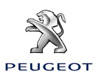 Novo Peugeot 207 2015 icarros