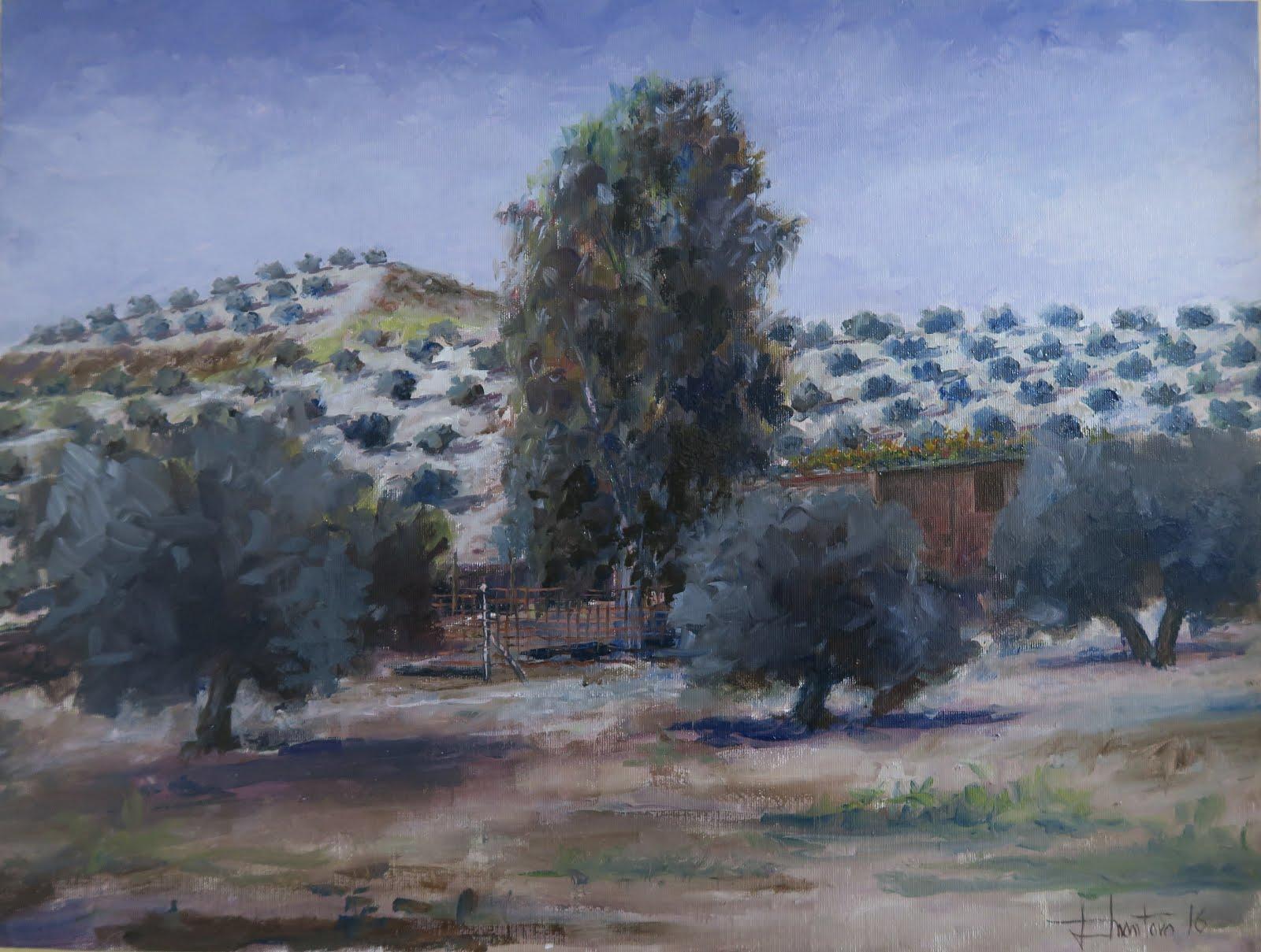 En la falda del Cerro del Águila; Fuerte del Rey, Jaén (12P)