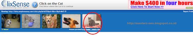 Klik gambar kucing
