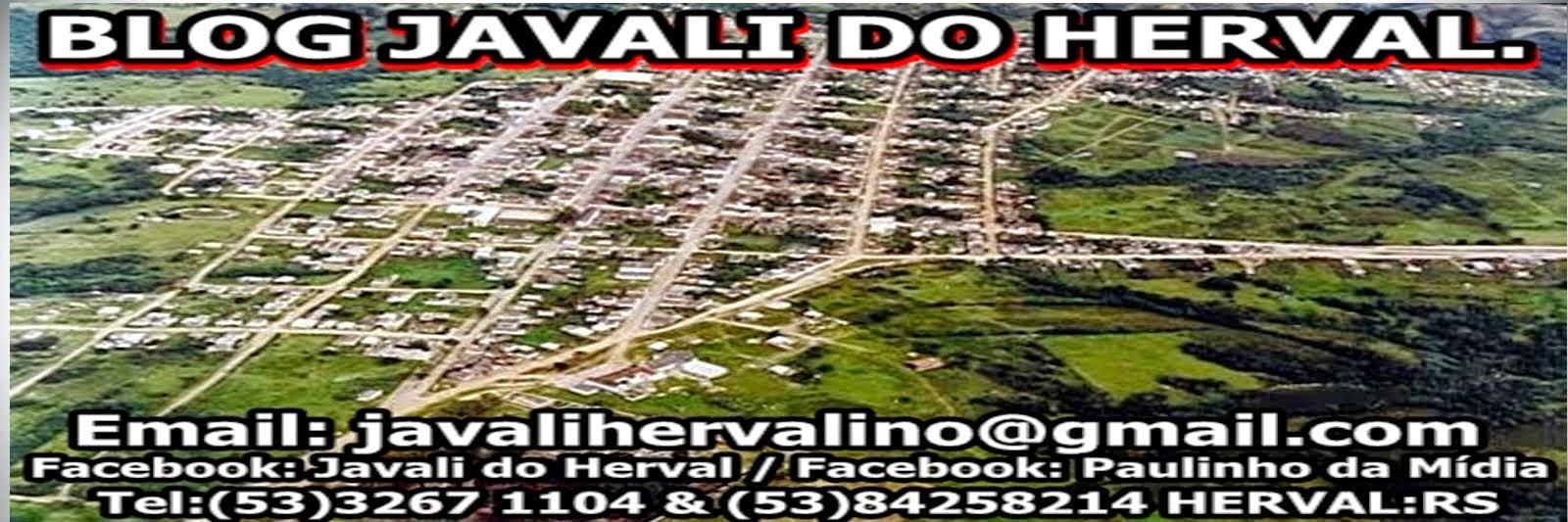 BLOG JAVALI DO HERVAL  javalihervalino@gmail.com  (53) 84258214