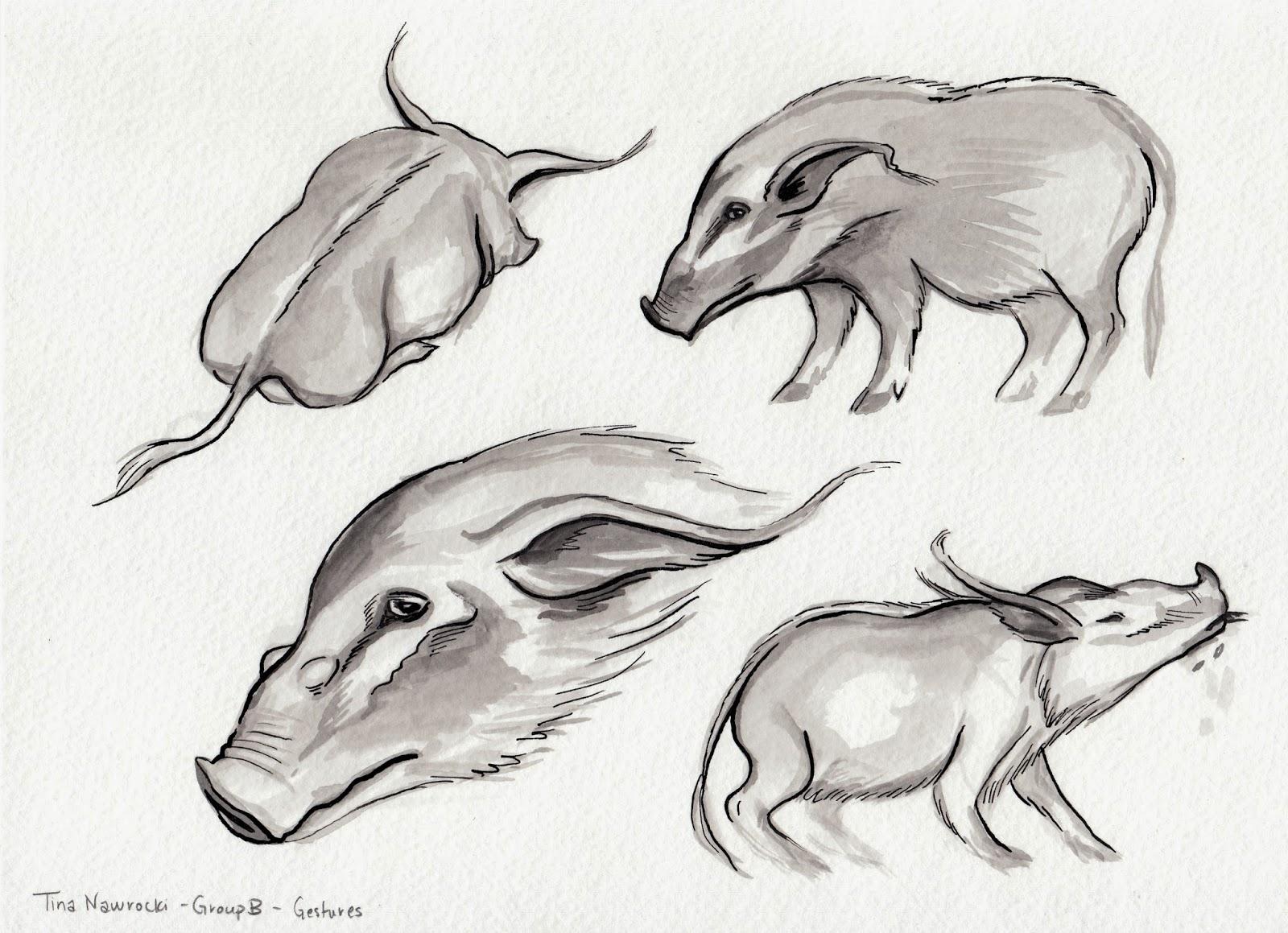 tina nawrocki art and animation life drawing the zoo
