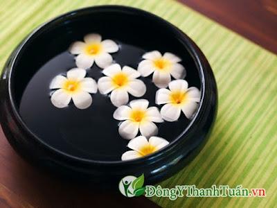 chữa viêm mũi dị ứng hiệu quả với hoa sứ