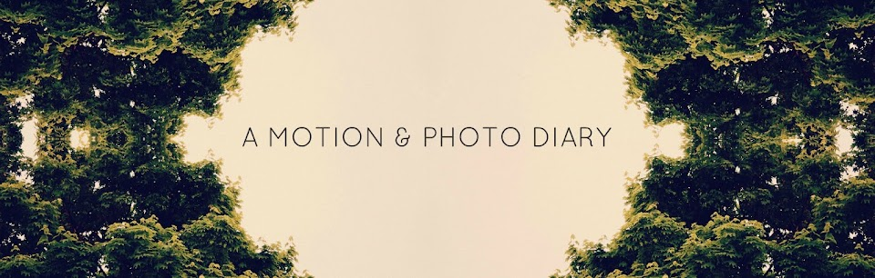 Zayna Daze Motion + Photo Diary
