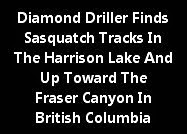 Diamond Driller Finds Sasquatch Tracks At The Harrison Lake B.C.