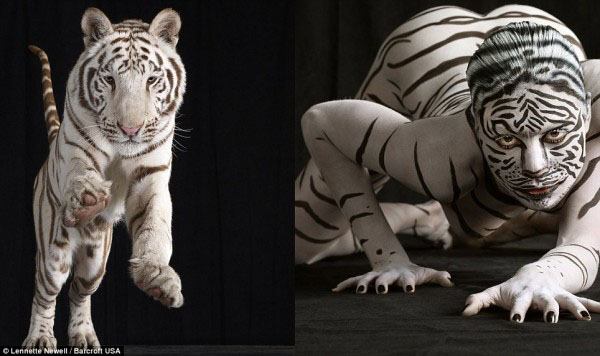 sexy body painting