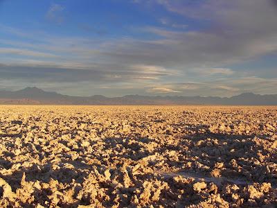 Cientistas descobrem vida no lugar mais seco do planeta
