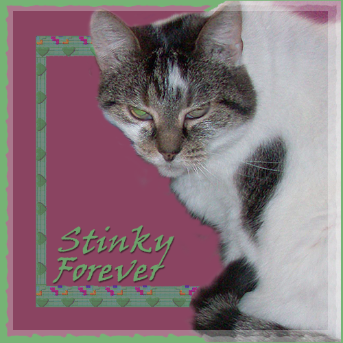 R.I.P. Stinky