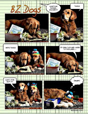 BZ Dogs News
