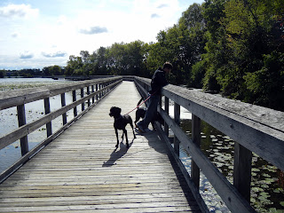 Walking on the boardwalk in North Bay Park near Ann Arbor, Michigan