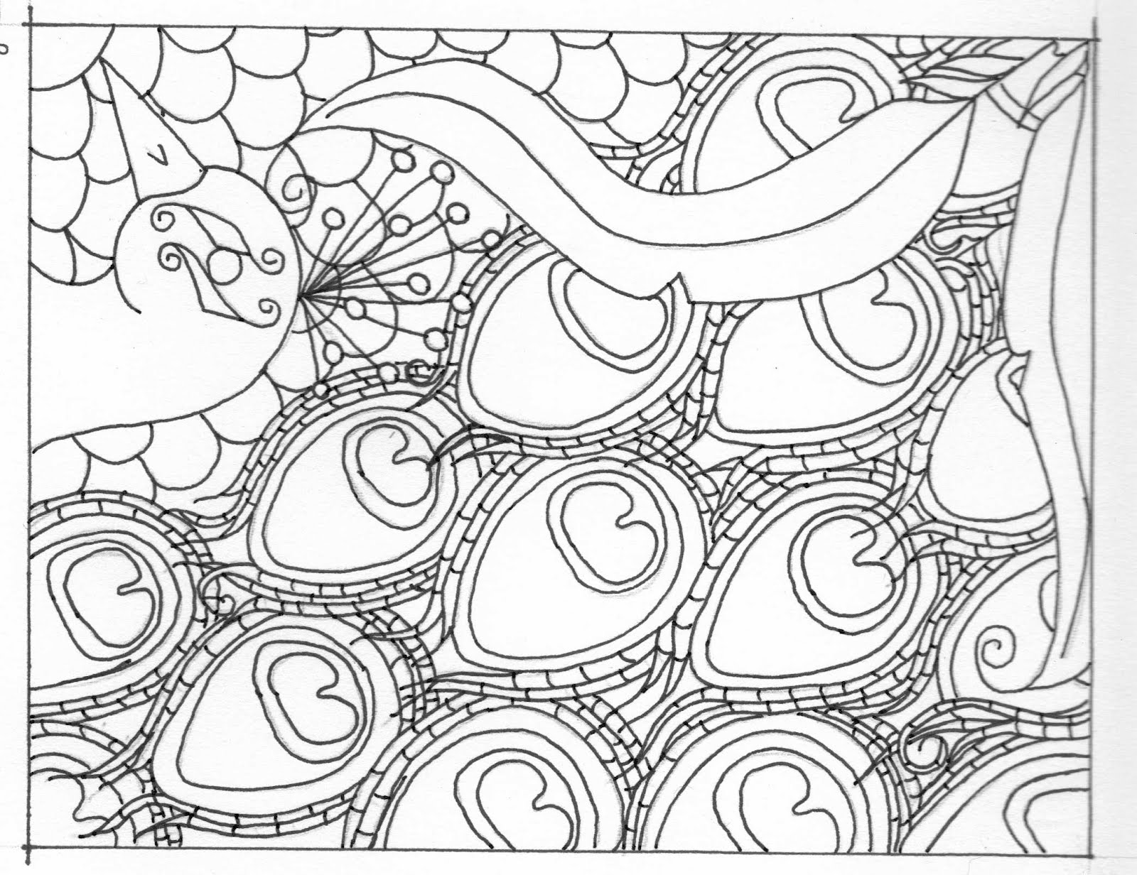 Coloring pages peacock - Friday January 20 2012