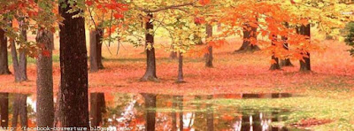 Photo de  couverture facebook automne