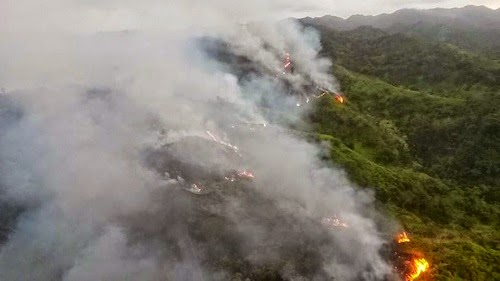 forest_fire_oahu