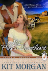 His Prairie Sweetheart (Prairie Brides, Book Five)