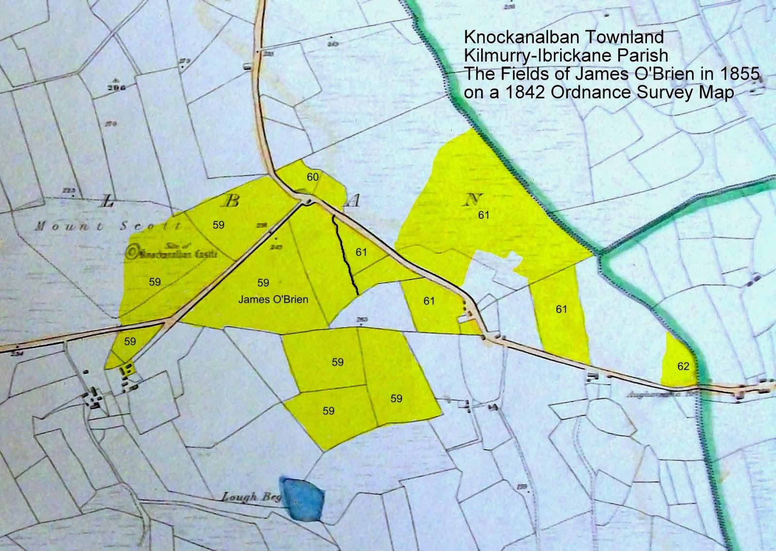 O Brien S Of Kilmurry Ibrickane Parish Co Clare O Brien Farm In