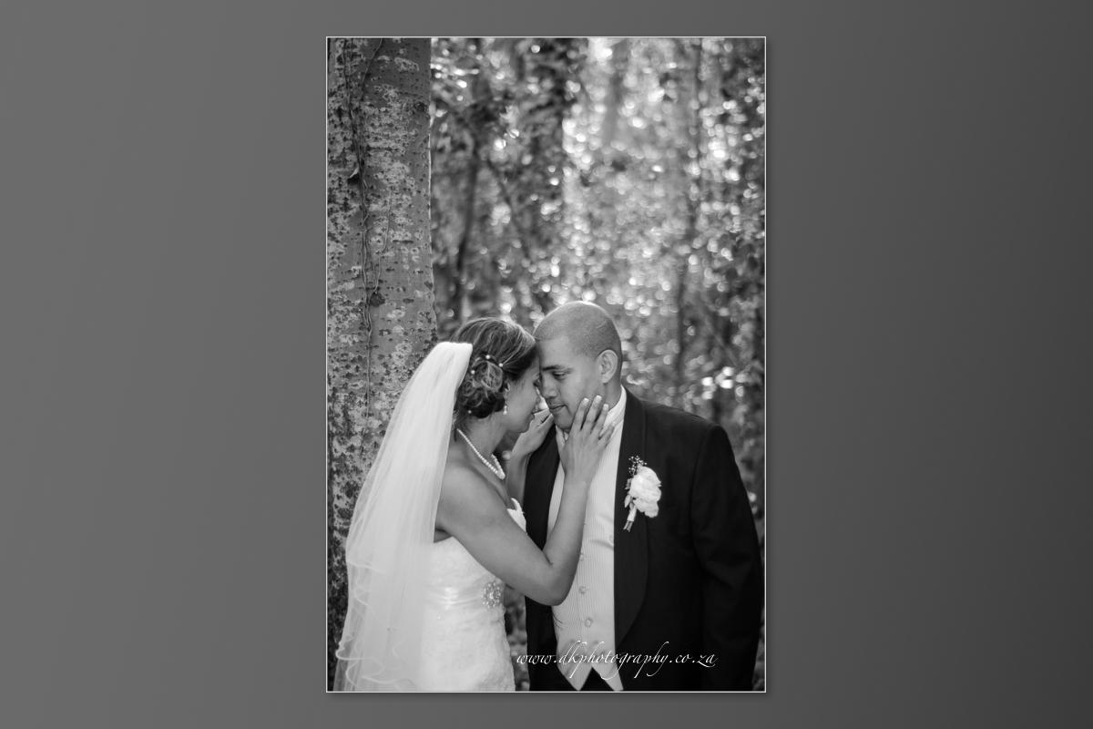 DK Photography DVD+slideshow-370 Cleo & Heinrich's Wedding in D'Aria, Durbanville  Cape Town Wedding photographer