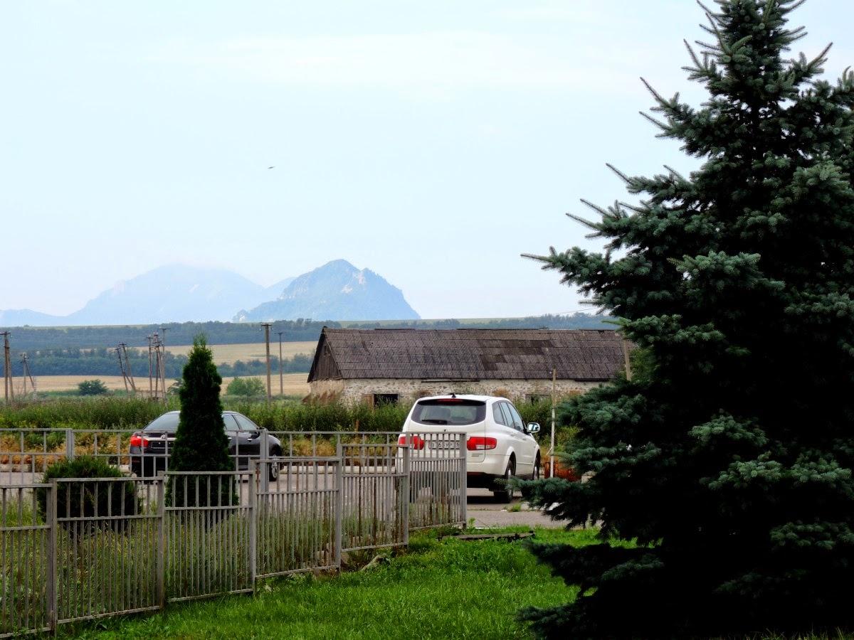 горы на трассе М29