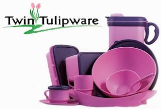 Peluang Bisnis Rumahan Twin Tulipware