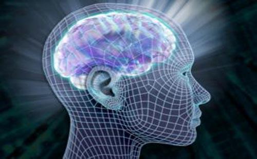 أسوأ عشر عادات تدمر مخ الإنسان 2013 مدونة لمعلوماتك