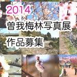 曽我別所梅林 写真コンテスト 2014