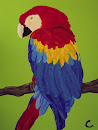 Parrot for Sept. 8 Art Show