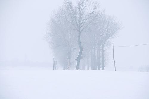 Fotografías de Invierno