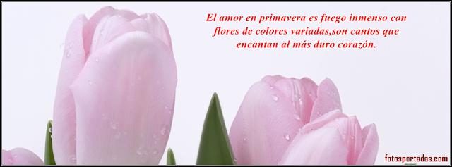 Imagenes de amor Portadas para facebook | Imagenes De Amor