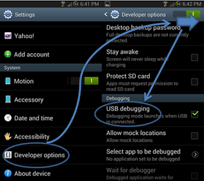 How to enable Developers Option/USB Dubbing in Android