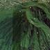 Menjelajahi Indahnya Gunung Bismo yang Masih Perawan
