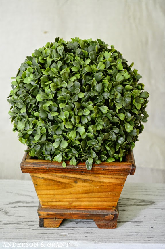 Wooden Planter with Boxwood Ball | Anderson and Grant