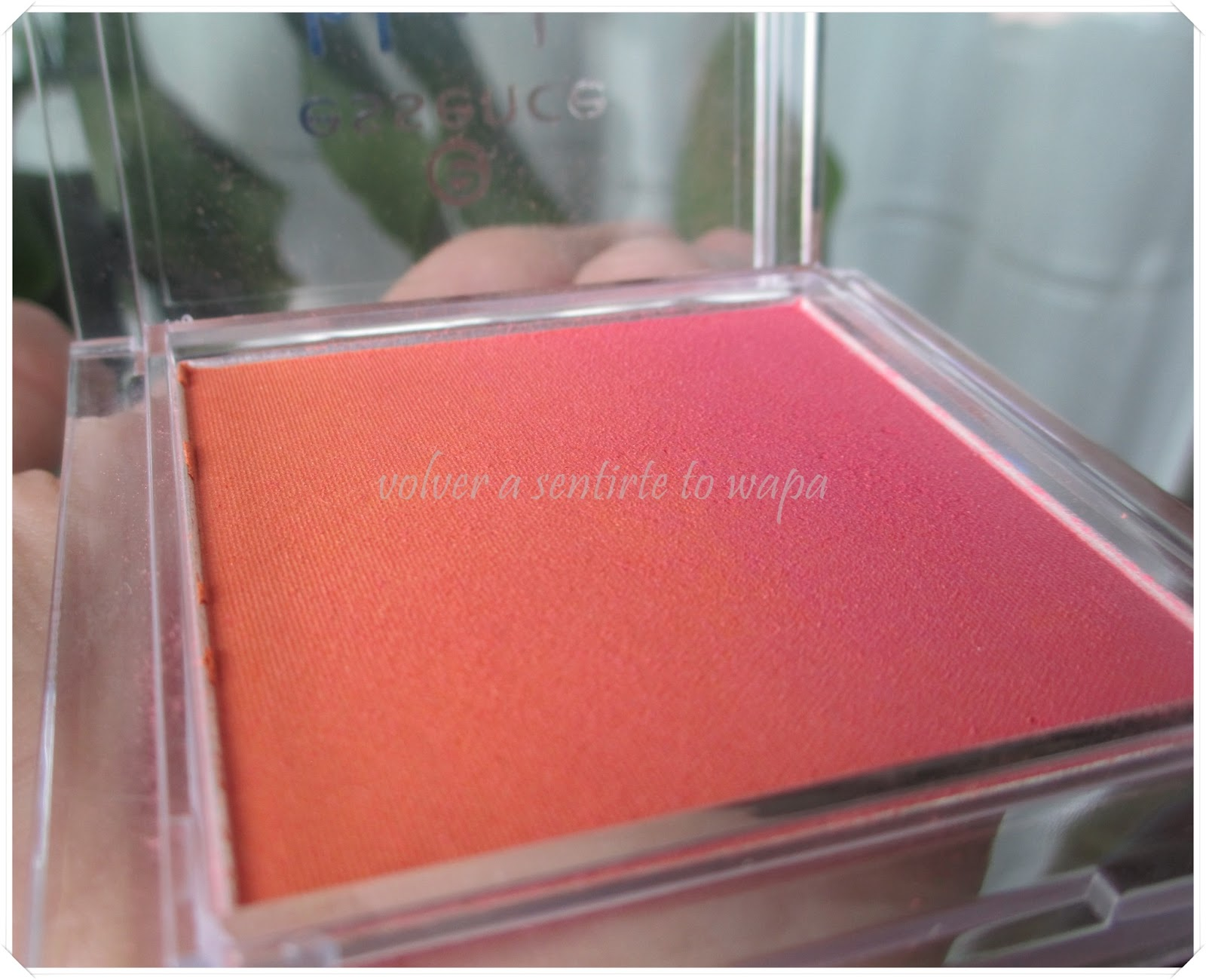 Coloretes de Essence - Blush up! - 10 heat wave