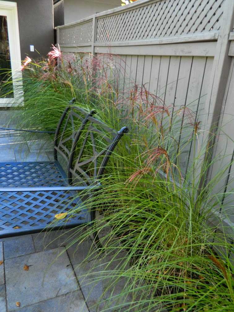 Greektown garden design after autumn by Paul Jung Gardening Services Toronto