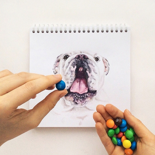 26-Want-a-Sweet-Valerie-Susik-Валерия-Суслопарова-Cats-and-Dogs-Interactive-Animal-Drawings-www-designstack-co