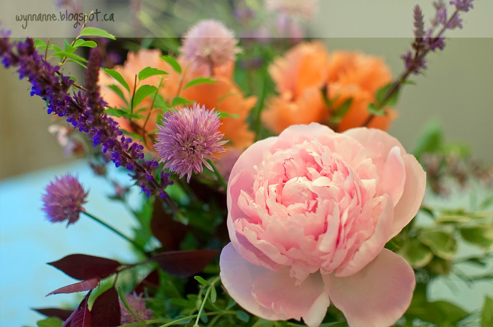Pick a Pretty Posy | Wynn Anne's Meanderings