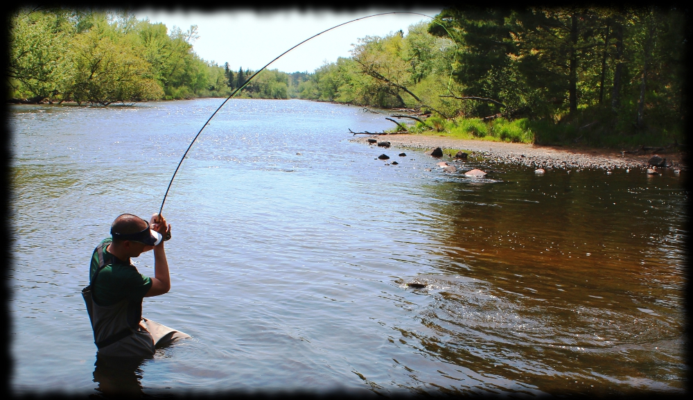 Illinois wisconsin fishing wisconsin river smallmouth bass for Best fishing lakes in illinois