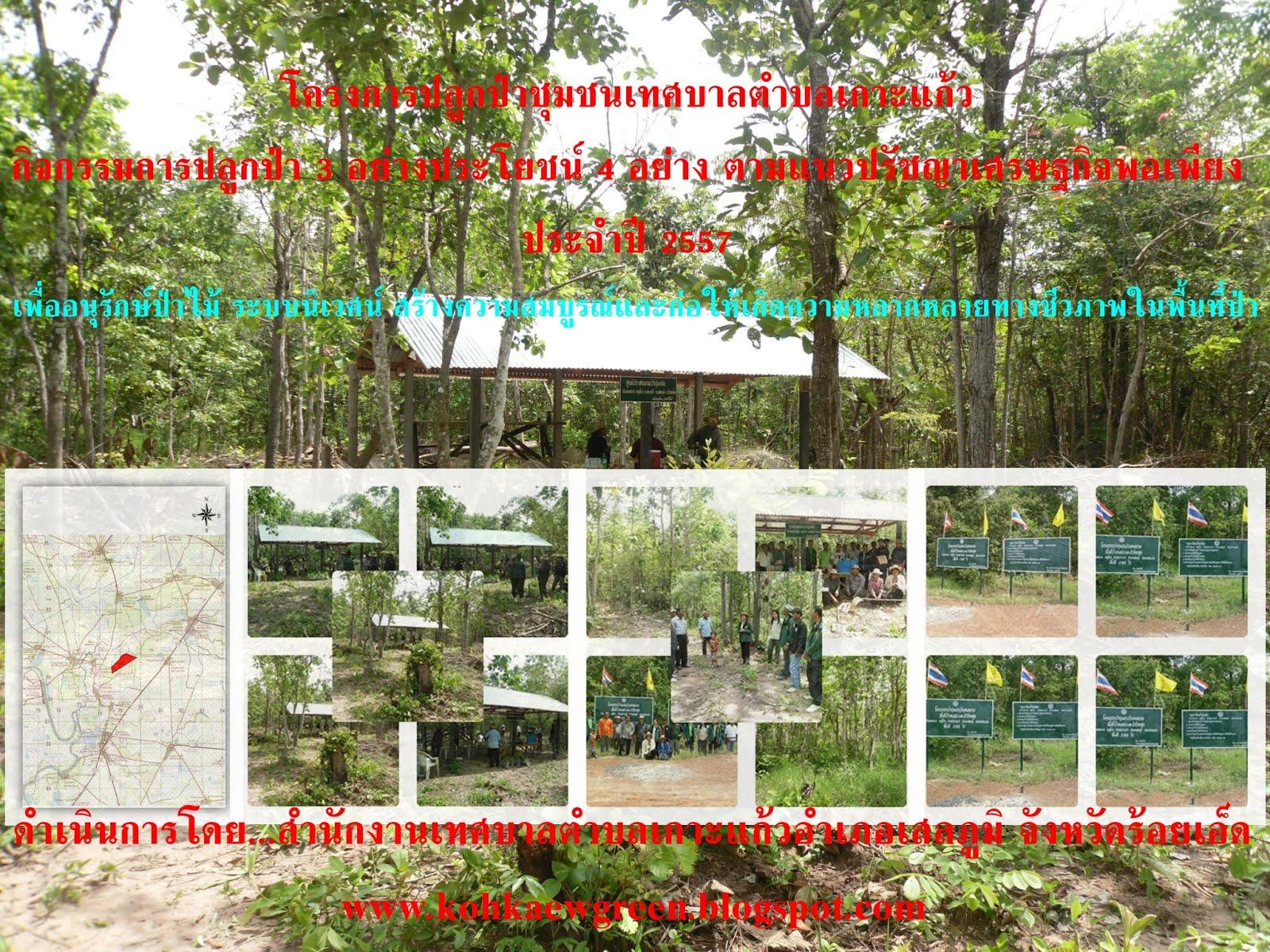 โครงการปลูกป่าชุมชน ปี 57