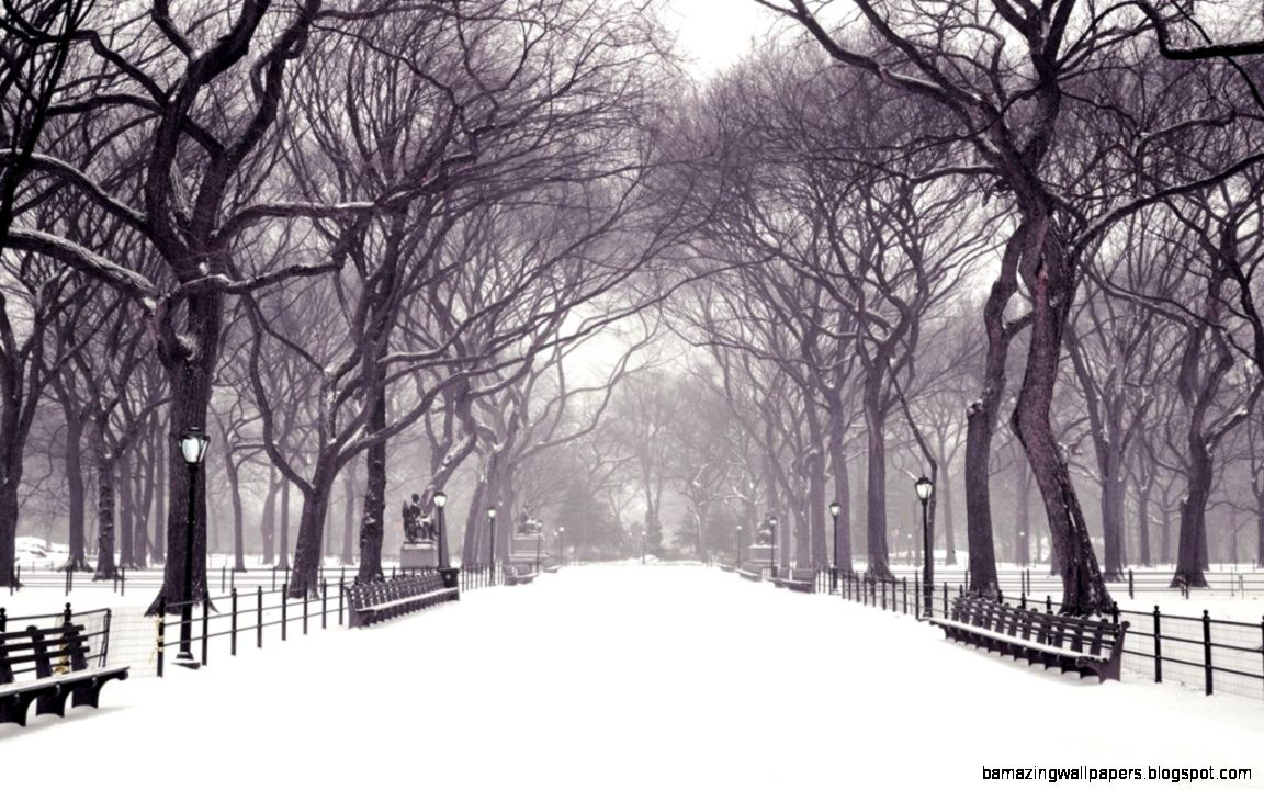 2139 Winter HD Wallpapers  Backgrounds   Wallpaper Abyss