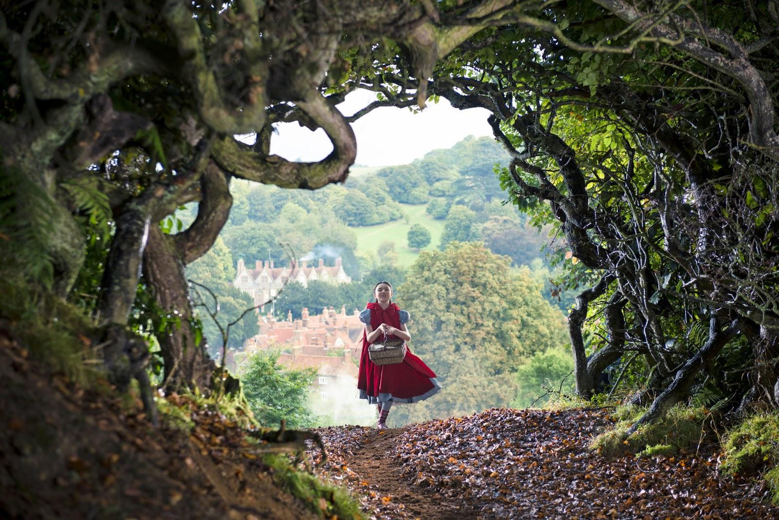 Floresta Do Mal Online pertaining to caminhando e cantando, e seguindo a canção - borrachatv on-line