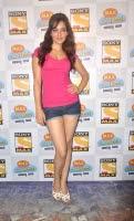 Neha Sharma in very cute Shorts Lovely Beauty