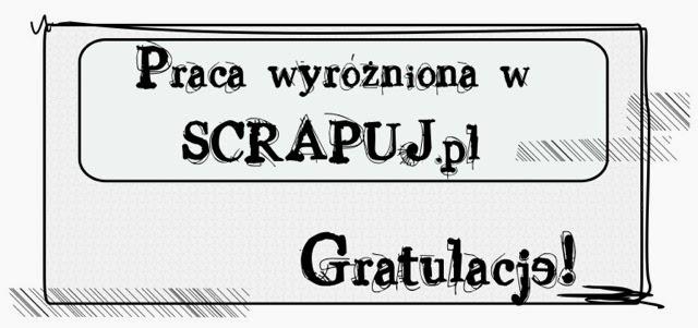 wyróżnienie w scrapuj.pl